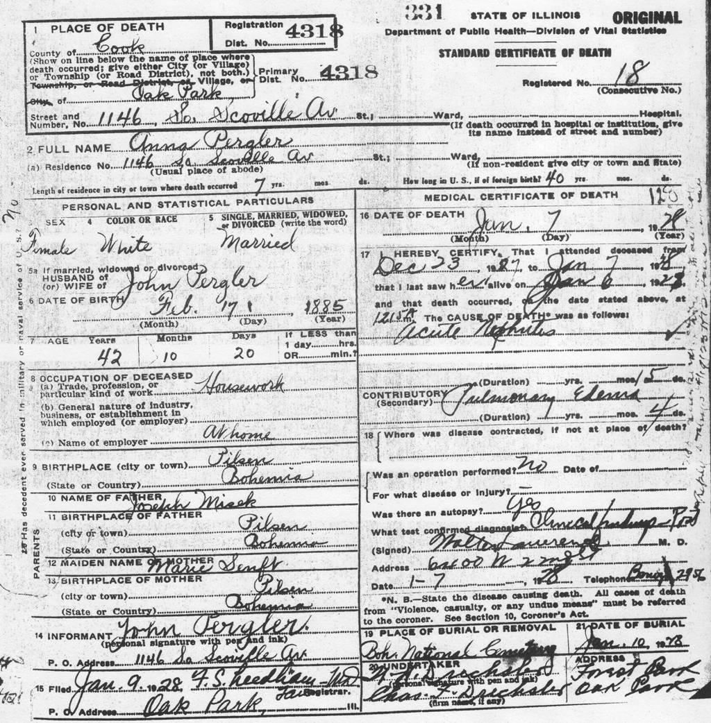 Pergler Family History Annieanna Misek Pergler 1885